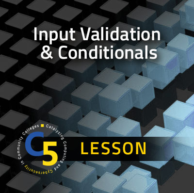 Curriculum Lesson: Input Validation and Conditionals